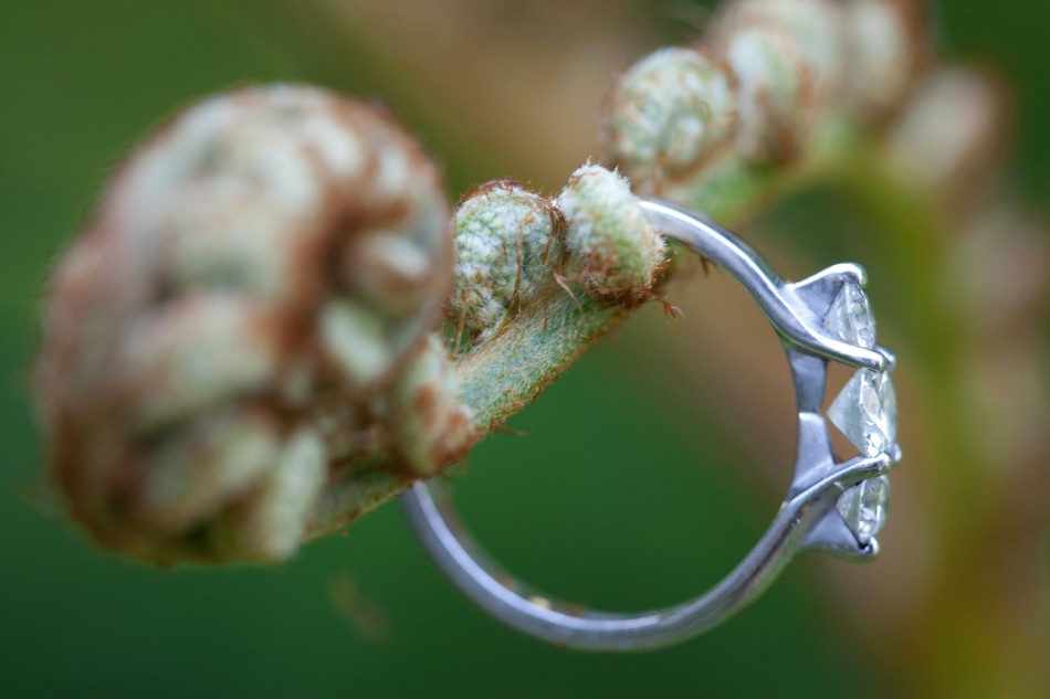 Engagement Ring Photos, Ring up close, Engagement Rings Cape Town, Engagement Ideas, Engagement Venues, Macro, Jewelry Photography, Engagement Photography
